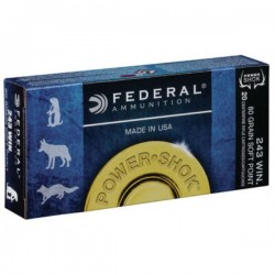 FEDERAL 243 WIN 100 GRAIN SOFT POINT